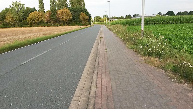 Straße Rinteln, Burgfeldsweide