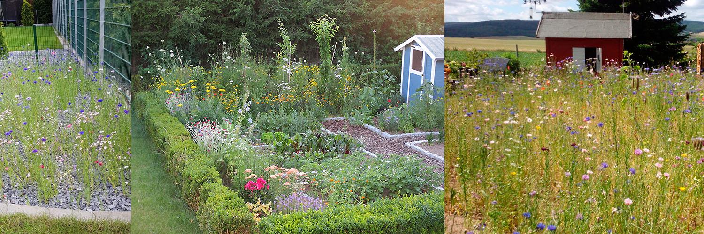 Titellbild: Lichtblicke aus privaten Gärten