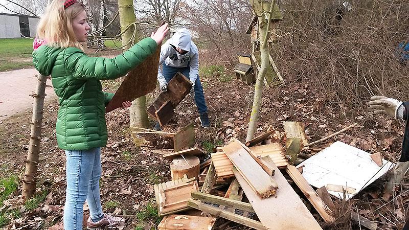Vergessene 'Schätze' kommen wieder zu Tage, ein Totholzhaufen entsteht.