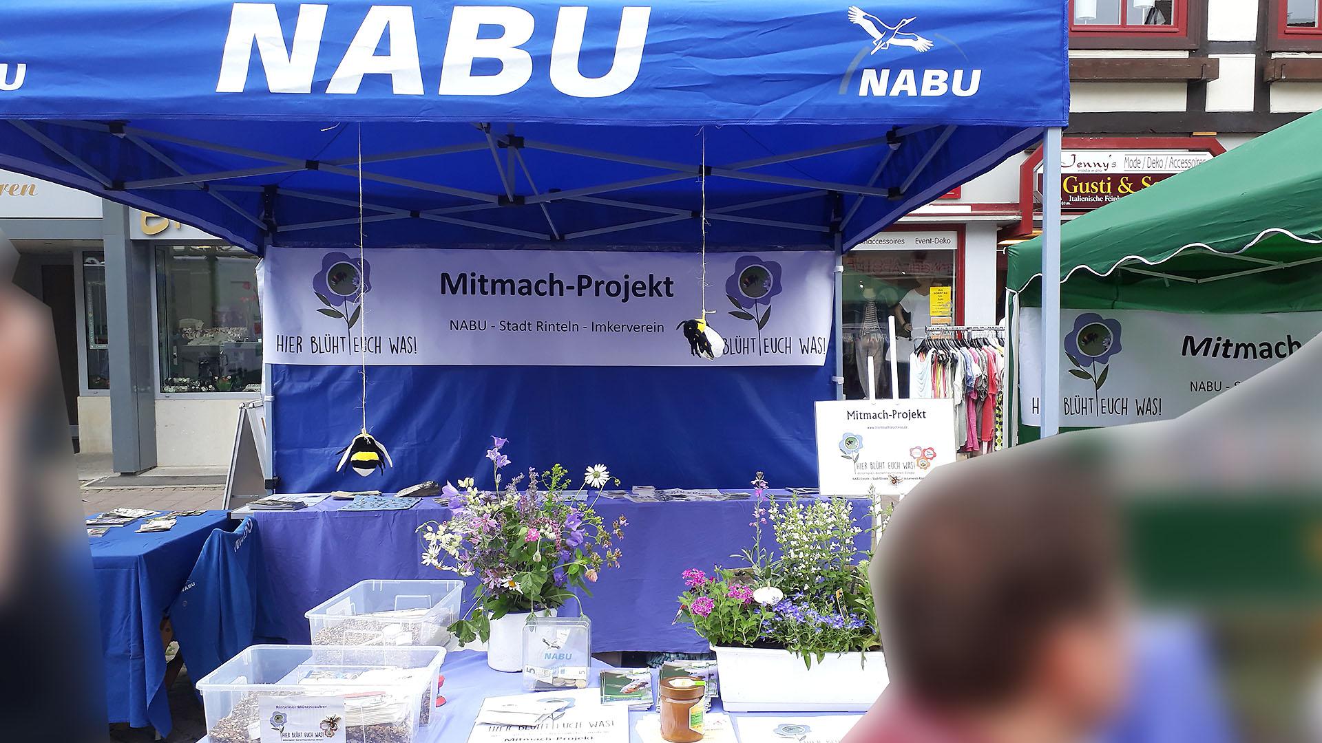 Stand des Mitmach - Projekts: 'Hier blüht Euch was!'
