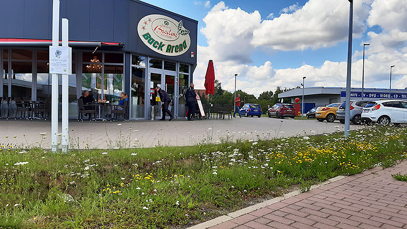 Back-Arena Rinteln