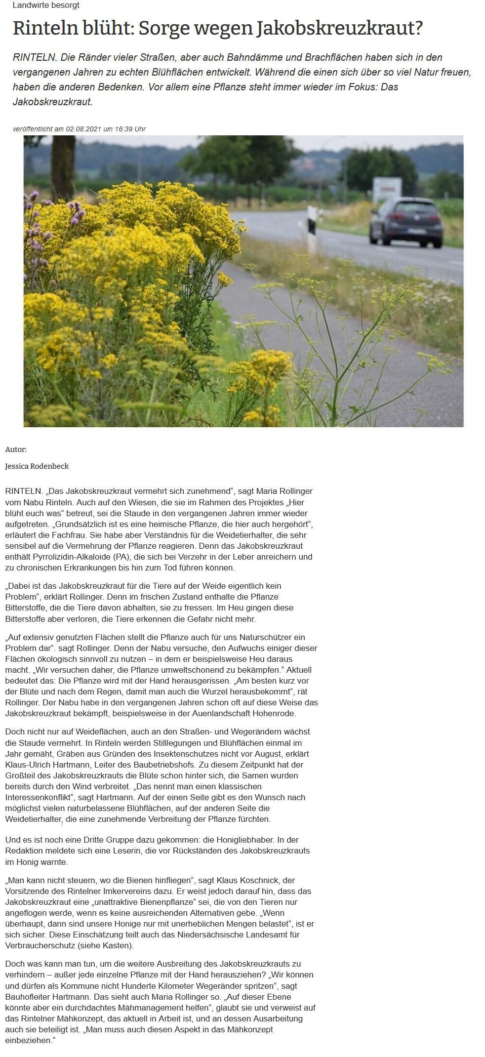 Zeitungsartikel - Rinteln blüht - Sorge wegen Jakobskreuzkraut (SZ, 02.08.2021)