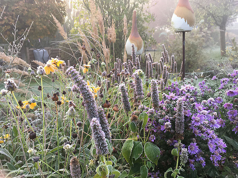Garten Familie Kupper im Herbst